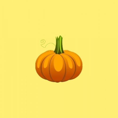 Don't Waste Your Halloween Pumpkins