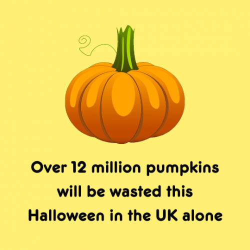 Don't Waste Your Halloween Pumpkins